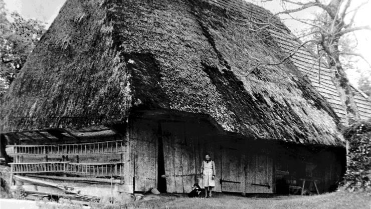 Das letzte Strohdachhaus von Schmiedrued wurde 1962 abgebrochen, das Vollwalmdach bedeckte zu jenem Zeitpunkt nur noch den Ökonomieteil.