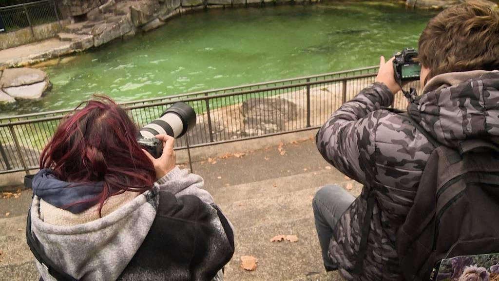 Tierliebe extrem: Beatrice und ihre Zoopassion