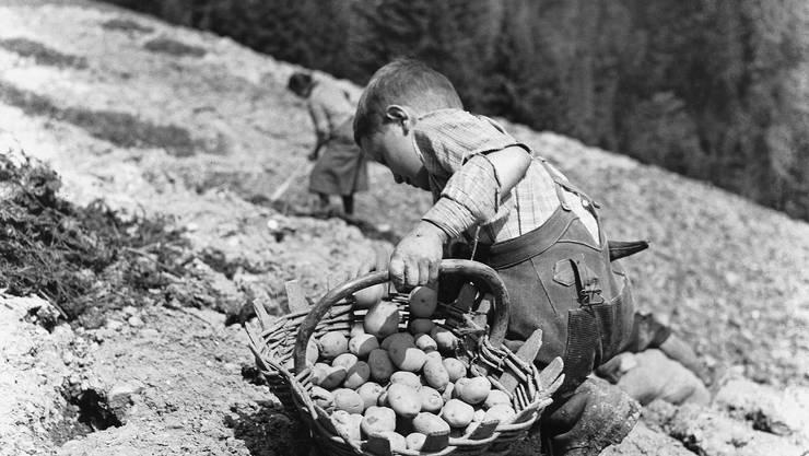 Kartoffeln setzen statt spielen und zur Schule gehen – auch für Schweizer Kinder lange Realität.