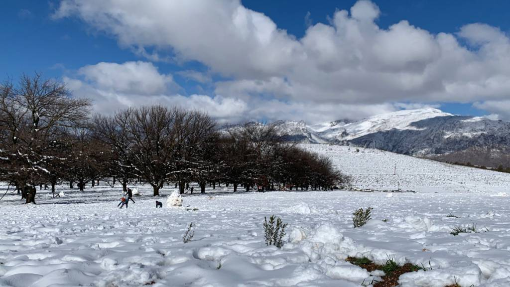 Eine geschlossene Schneedecke hat sich in der Nähe von Ceres am Westkap von Südafrika gebildet. Foto: Kristin Paliza/dpa
