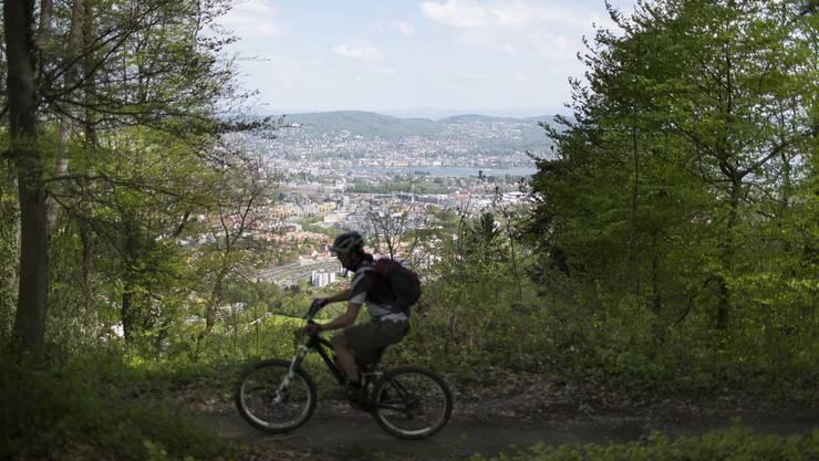 Ein Mountainbiker fährt auf dem Uetliberg, im Hintergrund das Seebecken der Stadt Zuerich