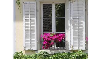Blumenfenster in der Altstadt.