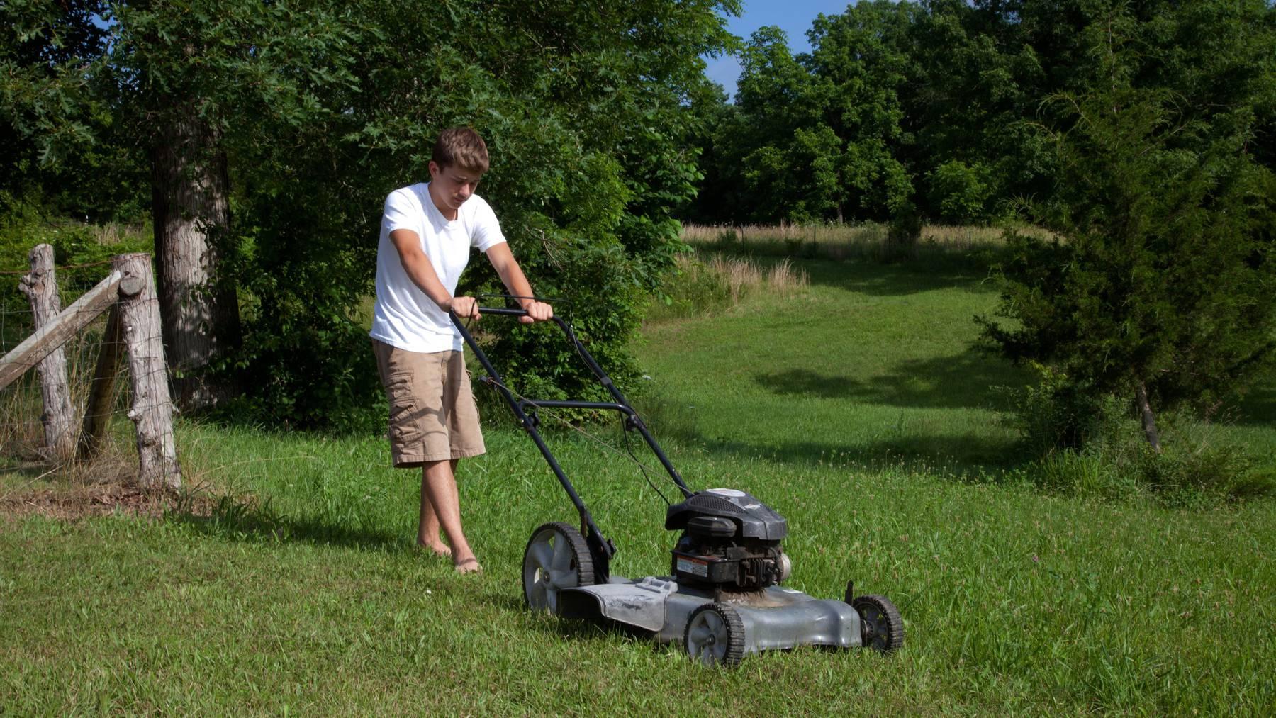 Rasenmähen gehört ebenfalls zu den beliebten Sommerjobs.