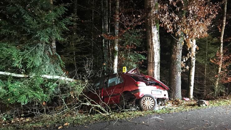 Ein 23-jähriger kam von der Strasse ab und prallte gegen mehrere Bäume.