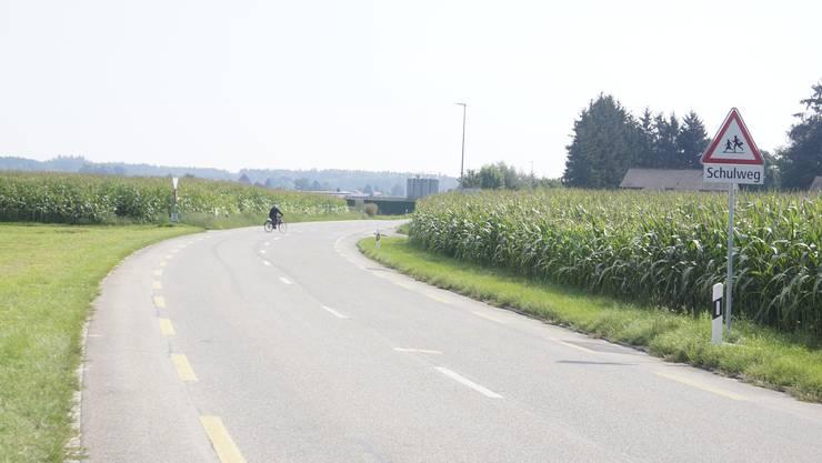 Auf der Tempo-80-Strecke weist ein Schild auf den Schulweg hin, auf dem im Hintergrund Schülerinnen und Schüler die Strasse kreuzen.