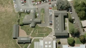 Die Phallus-Symbole auf dem Schulgeländer des Fairfield College in Hamilton, Neuseeland