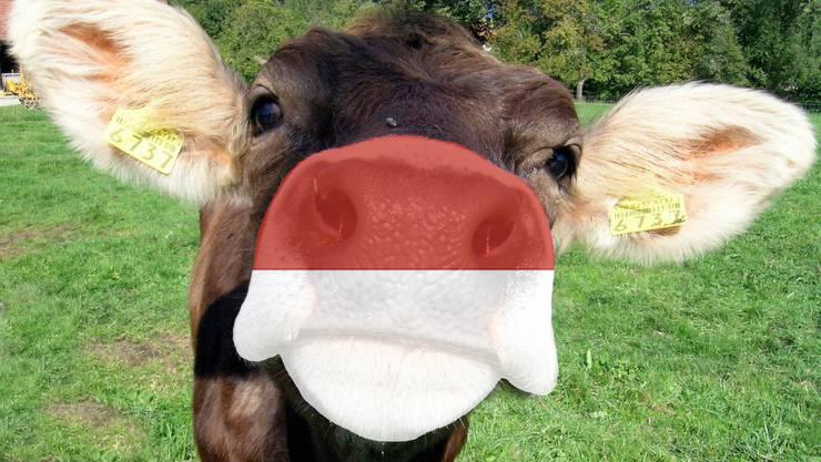 Verstehen Sie Solothurner Dialekt?