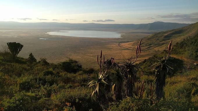 Safari im grössten Vulkankrater der Welt