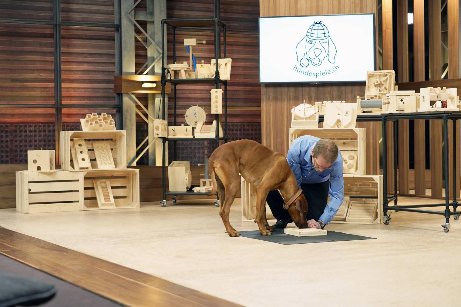 «Fitz The Dog», der treue Begleiter von Investor Tobias Reichmuth, testet das Spielzeug höchstpersönlich. (Bild: pd)