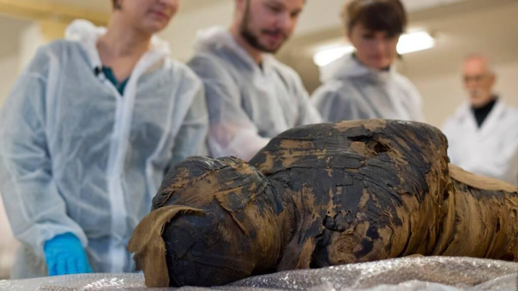 Polnische Forscher entdecken Fötus im Bauch einer ägyptischen Mumie
