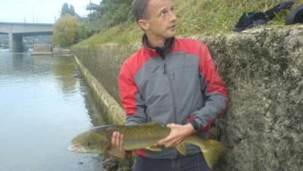 Kehrt der Lachs in den Rhein zurück?