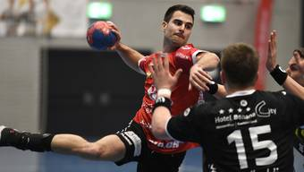 Swiss Handball League, TV Endingen - Pfadi Winterthur, 29.01.20