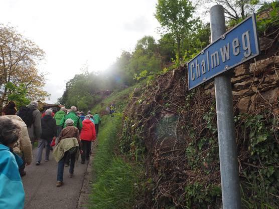 In Schinznach wurde mittels Rodungsarbeiten der historische Verkehrsweg am Chalm freigelegt. Verantwortlich für das Projekt zeichnet der Jurapark Aargau. Er lud am Freitagabend zu einer Besichtigung ein.Am Chalmweg hat sich die Landschaft deutlich verändert.