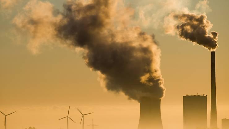 ARCHIV - Das Kohlekraftwerk Mehrum und Windräder produzieren Strom. Foto: Julian Stratenschulte/dpa