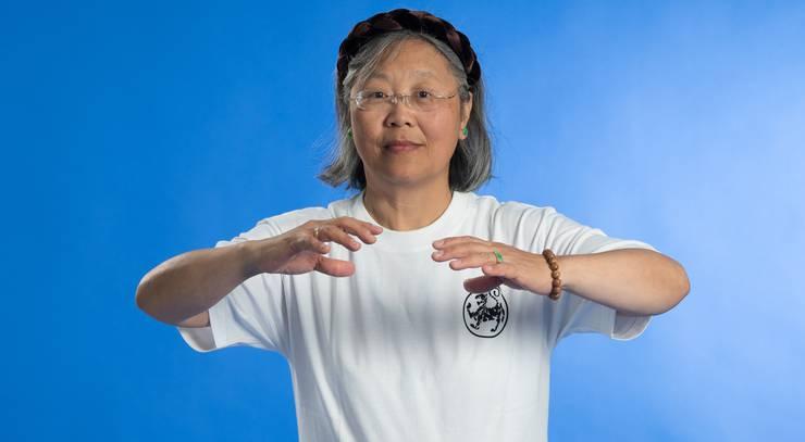 Verfügt über 30 Jahre Erfahrung in Qi Gong und Tai Chi. Spricht fliessend Deutsch.