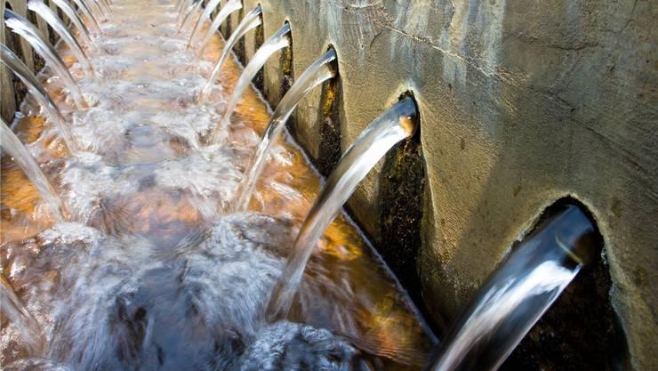 Nicht verschmutztes Abwasser soll nach Gewässerschutzverordnung abgetrennt werden und versickern. (Symbolbild)
