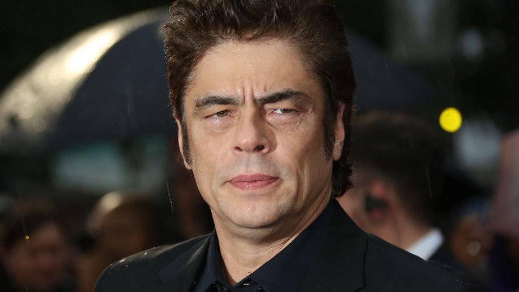 Benicio Del Toro letzte Woche bei der britischen Premiere von «Sicario» (Archiv).