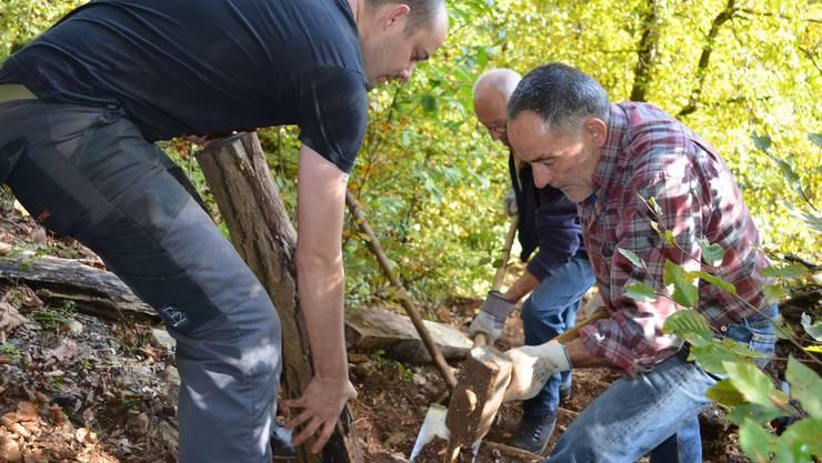 Fredy Brugger schlägt mit dem Hammer das Eisen ein, Stephan Hüsler assistiert und IG-Gisliflue-Präsident Heinz Alber schaufelt Erde weg.ihk