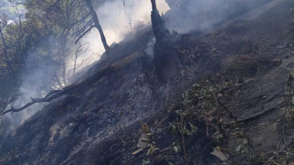 60 Feuerwehrleute bei Flurbrand im bündnerischen Cazis im Einsatz