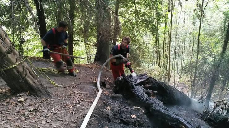 Wegen der Trockenheit ist am Uetliberg ein Flächenbrand ausgebrochen.