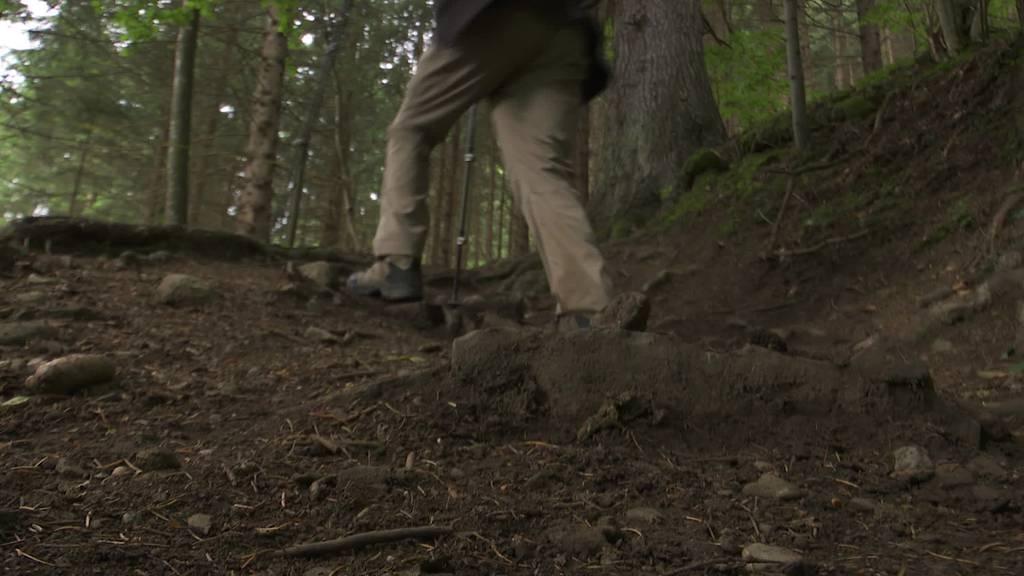 Wald als Rennpiste: Töfffahrer zerstören Quartner Wanderwege
