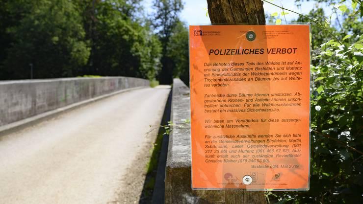 Dass das polizeiliche Betretungsverbot des Hardwalds noch immer gilt, hat verschiedene Ursachen.