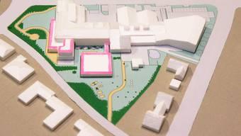 Nach dem 2011 bezogenen Osttrakt (r.) werden 2014 weitere Ausbaupläne (pink) realisiert: die Totalsanierung der westseitigen Zimmer, die Aufstockung zu einem Aufenthaltsraum und der südseitige Pavillon.