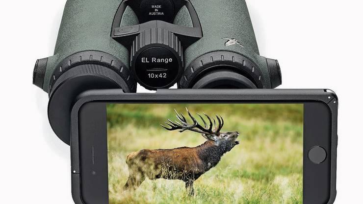 Ein brünstiger Hirsch als Nahaufnahme: Mit dem Feldstecher dazwischen gelingt das. Bild: Swarovski
