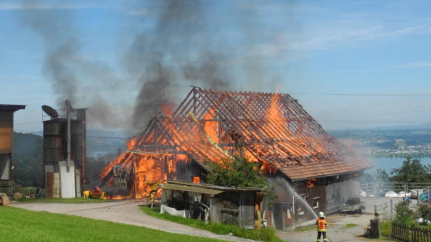 Galgenen SZ: Stall komplett niedergebrannt