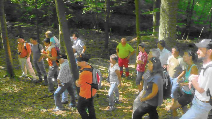 Bei der Waldbereisung schauen alle gespannt der Demonstration des Baggers zu