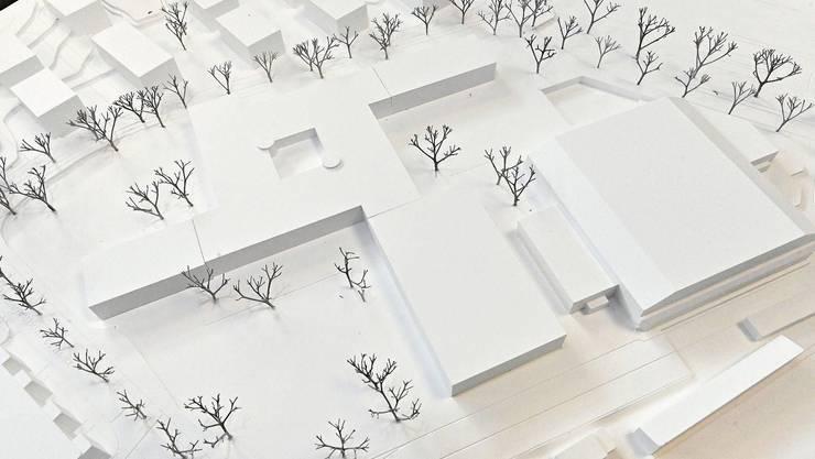 Schulhaus Kleinholz im Modell: Das Siegerprojekt Windmolen beinhaltet einen Schultrakt in Windmühlenform (links) und in der Bildmitte ist die beabsichtigte Dreifachhalle situiert. Rechts davon liegt die jetzige Stadthalle.