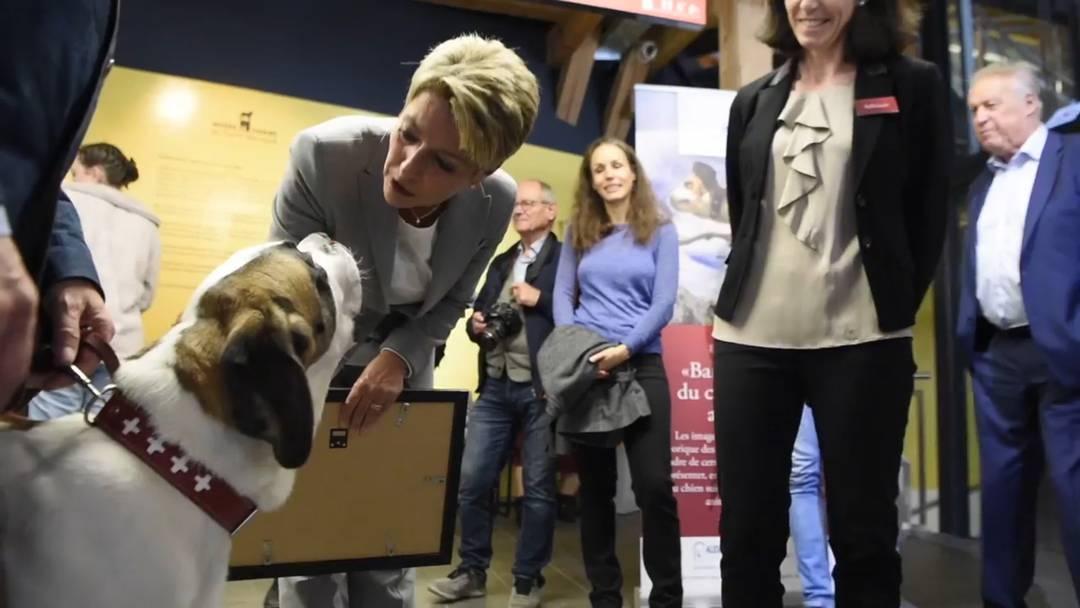 Karin Keller-Sutter wird Patin eines Bernardinerhundes