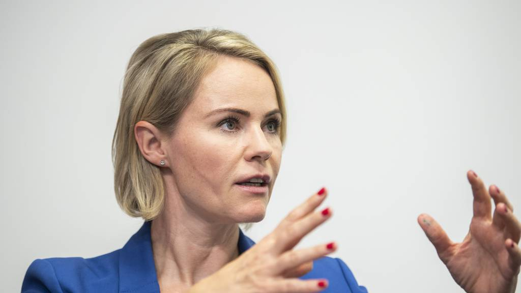Der Kanton Zürich habe Offerten für Corona-Schnelltests eingeholt, sagt die Zürcher Gesundheitsdirektorin Natalie Rickli in einem Interview.