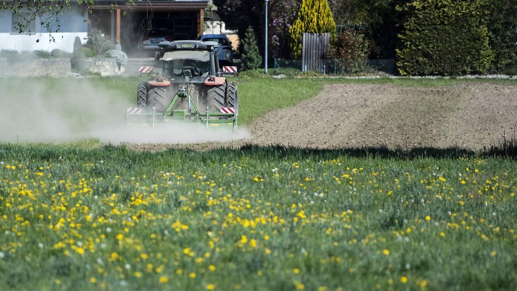 Forscher entdecken Gen, das Pollenzahl von Pflanzen beeinflusst