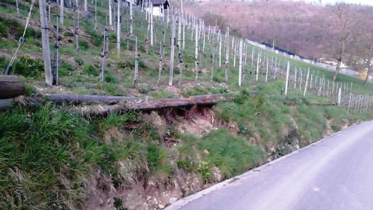 Beim Hornweg ist Ende 2013 ein Teil der Böschung abgerutscht.