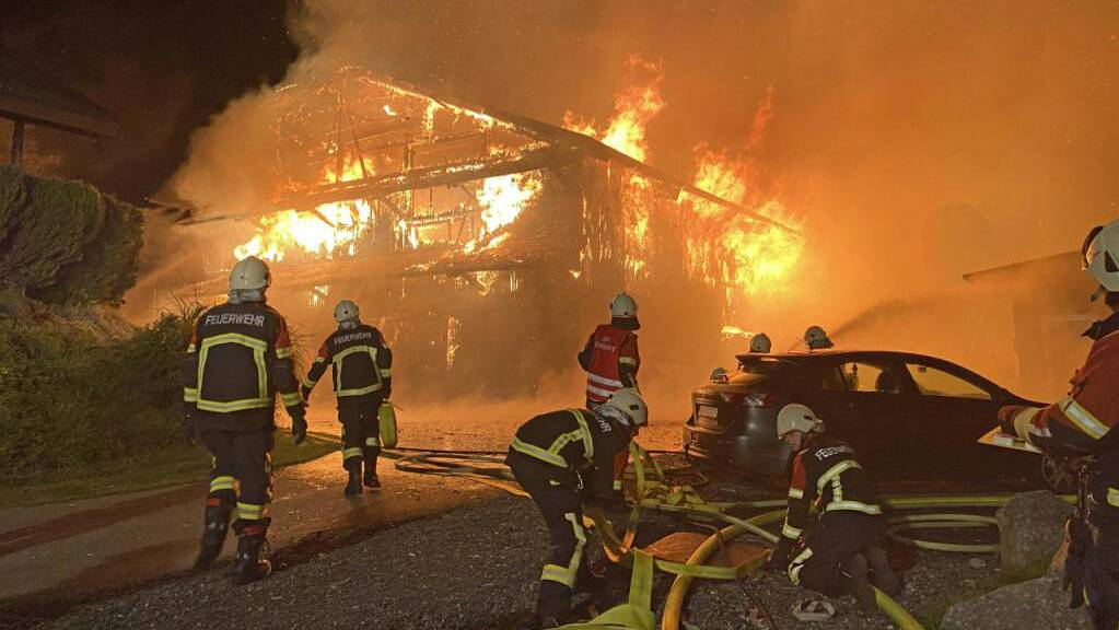 Beim Brand einer Scheune in Müswangen sind mehrere Milchkühe und Kälber verendet. Dutzende weitere Tiere konnten gerettet werden. Die Scheune brannte total aus.