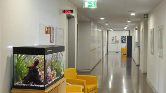 Die neue Station an der Wilhelm Klein-Strasse 27 bietet Platz für 16 Betroffene. Heinz Dürrenberger