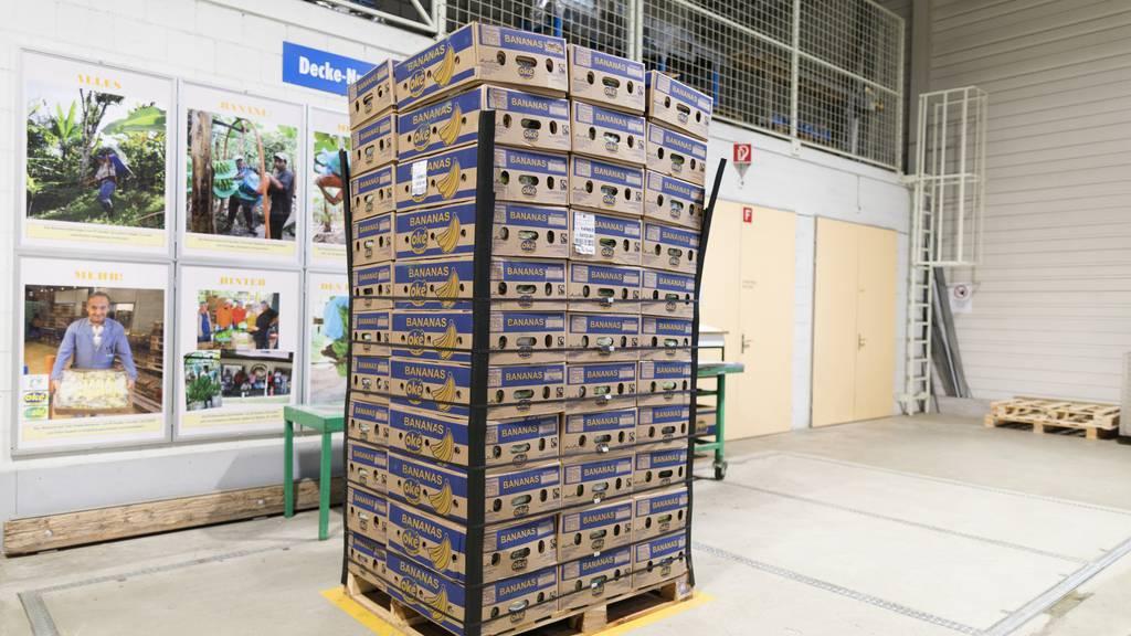 140 Kilo Kokain in Bananenschachteln gefunden – auch in der Ostschweiz