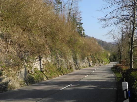 Der Hang entlang der Bretzwilerstrasse ist sehr steil