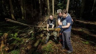 Waldgruppe vom Blumenhaus Buchegg