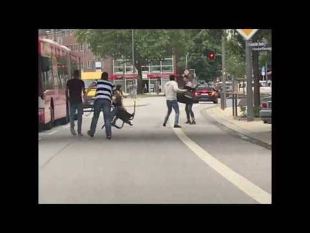 Hier gehen Passanten mit Stühlen auf den Hamburger Messer-Angreifer los