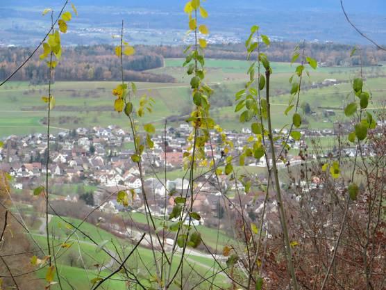 Blick auf Arisdorf