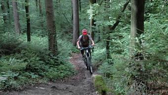Ein Mountainbiker auf einem unbewilligten Pfad im Wald.az archiv/kus