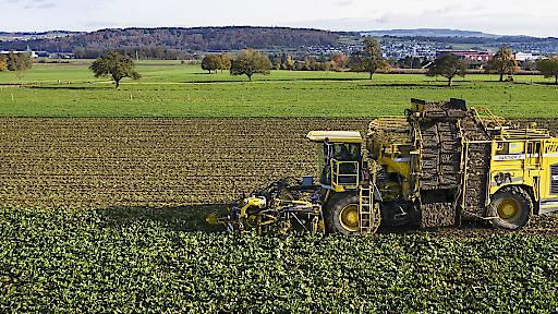 Bauern müssen mehr Auflagen erfüllen