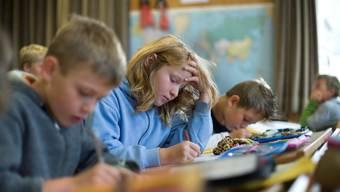 Integrative Schule - ausser Spesen nichts gewesen?