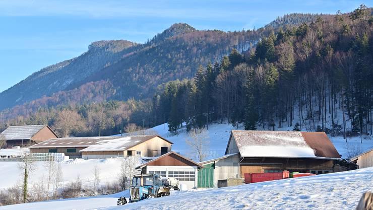 Im Gebiet zwischen diesen landwirtschaftlichen Liegenschaften und dem Wald im Hintergrund südlich von Welschenrohr sollen die Tiere dereinst angesiedelt werden.