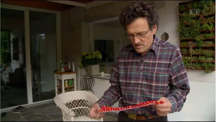 Johannes Jenny hat aber bereits einen Plan: Er will Milli einen Kragen nähen, damit die Eidechsen gewarnt werden.