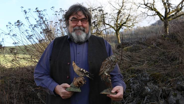 Meinrad Bärtschi mit einem Wiedehopf (l.) und einem Steinkauz. Beide Vogelarten sind im Fricktal von der Bildfläche verschwunden. Dennis Kalt