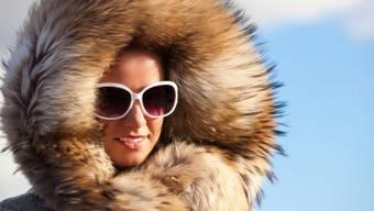 Früher verpönt, heute chic: Pelzimporte erreichen dieses Jahr Höchstwerte. Vor allem junge Kundinnen und Kunden entdecken die haarige Modepracht neu – trotz anhaltender Kritik. Foto: Shutterstock