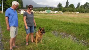 Hund Garo findet im Graben eine Leiche